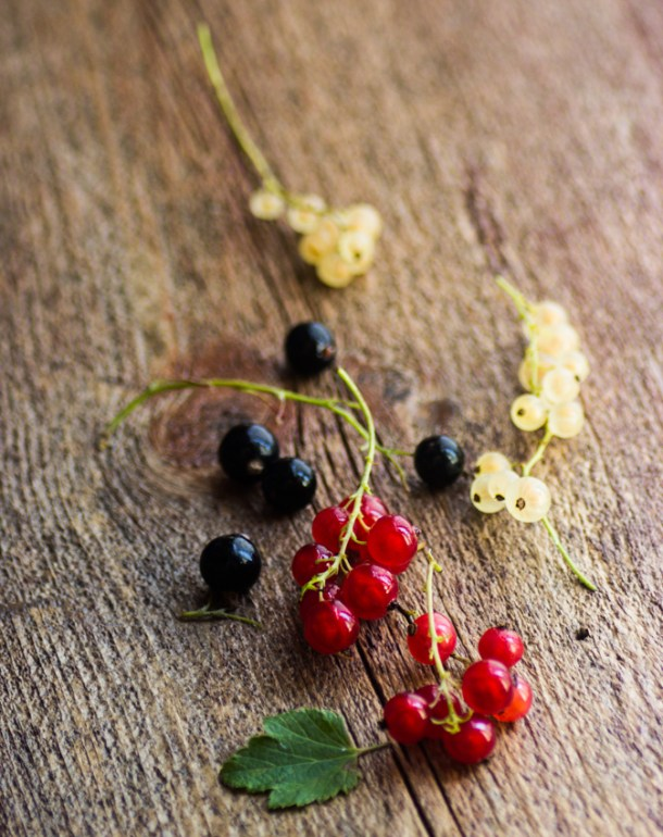 black, white, and red currants
