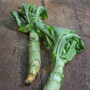 celtuce recipe, stem lettuce recipe, celtuce