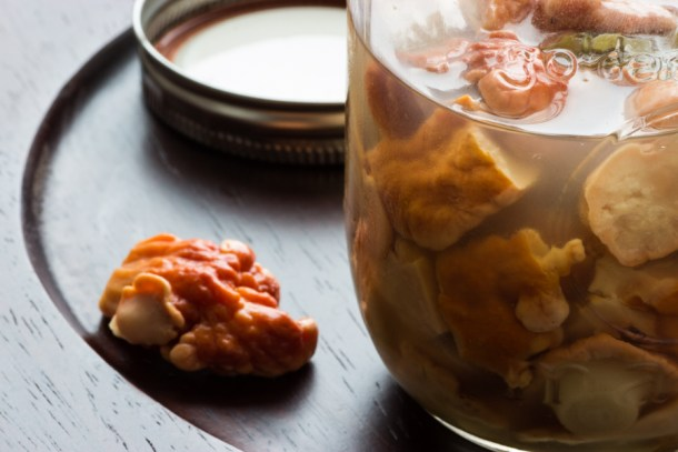 pickled chicken mushrooms
