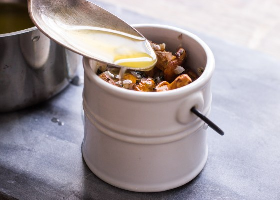 Potted chanterelle mushrooms