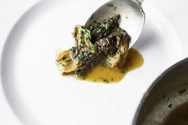 ricotta cheese and ramp tart with morel mushroom jus