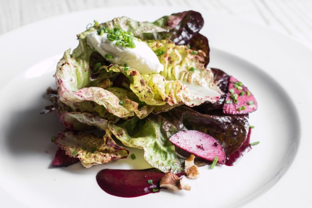 Red Oak Lettuce with Chokeberry Vingaigrette, Winter Radish and Chevre