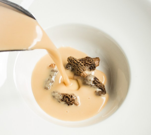 morel mushrooms bisque