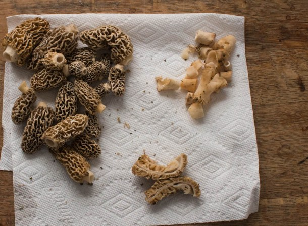 Cleaning morel mushrooms and leaving them whole for cooking