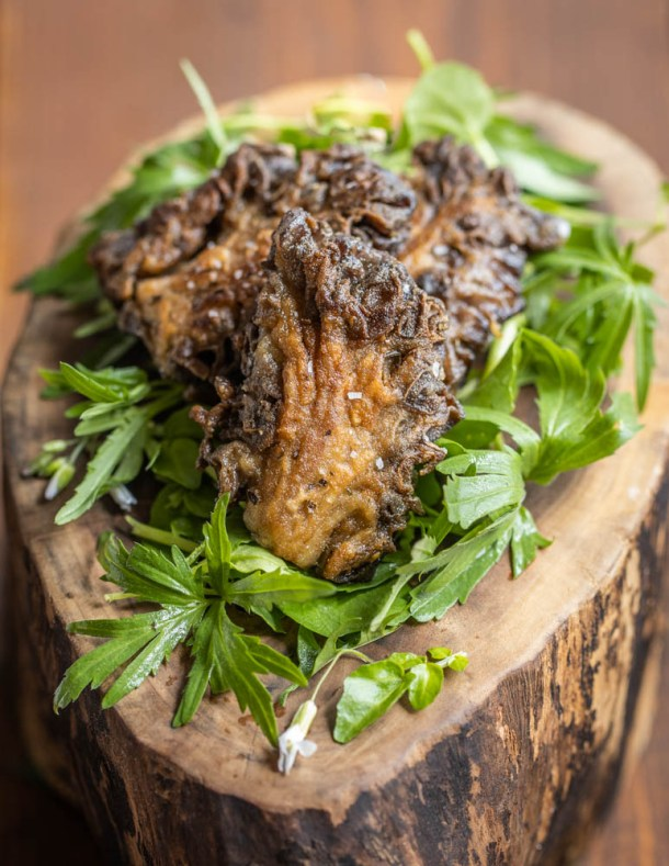 Fried Gyromitra Caroliniana