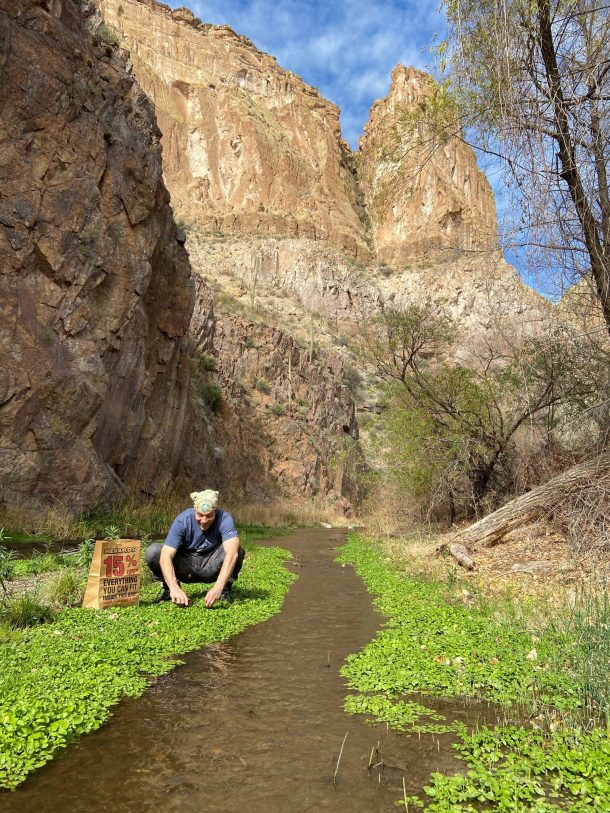 Harvesting watercress in a canyon
