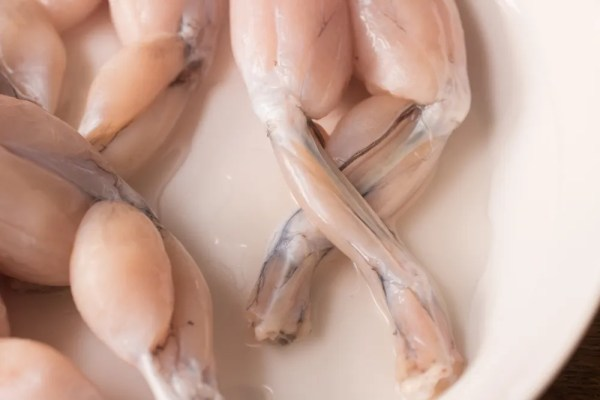 Fried frog Legs marinated in ramp puree (