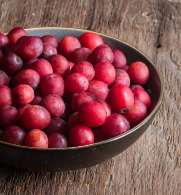 Image result for wild plums