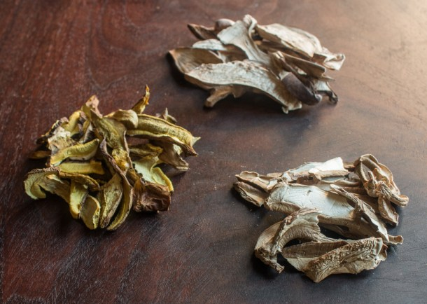 Dried Leccinum subglabripes, Boletus pallidus, and Tylopilus indecisus mushrooms
