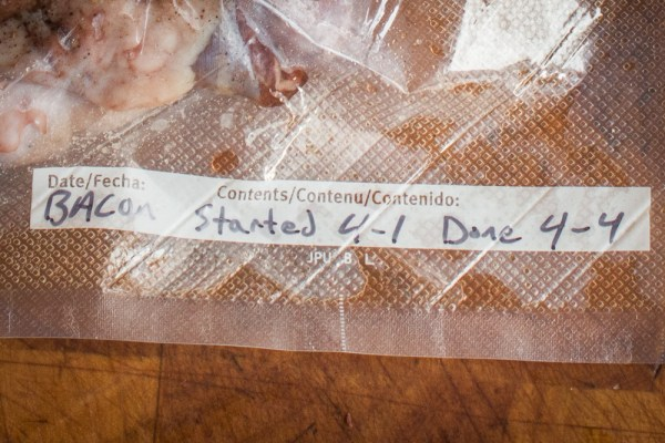 Curing and vacuum sealing maple sugar cured venison bacon