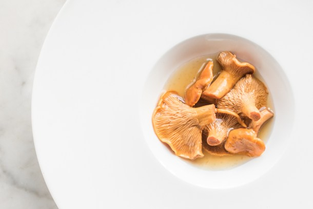 Fermented chanterelle mushrooms