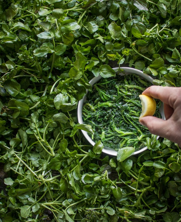 How to steam wild leafy greens recipe