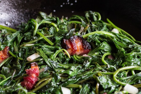 Sochan with venison bacon ramps and maple vinegar recipe