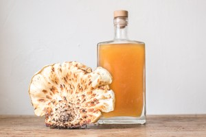 Fermented pheasant back or dryad saddle shoyu recipe with koji