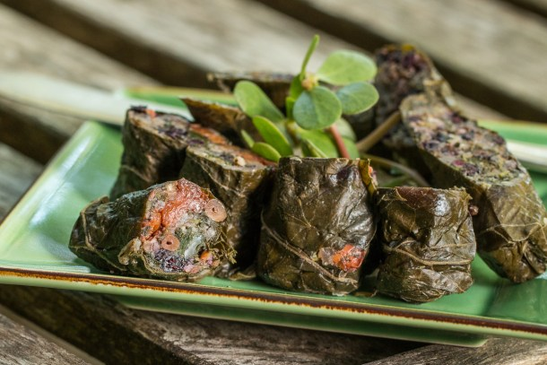 Fermented wild grape leaves stuffed with wild fruit, wild rice, greens and nuts