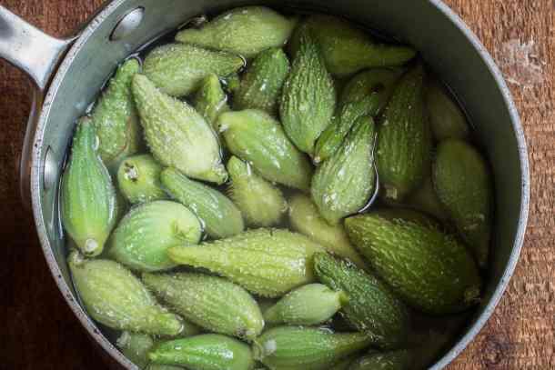 Blanching milkweed pods for eating
