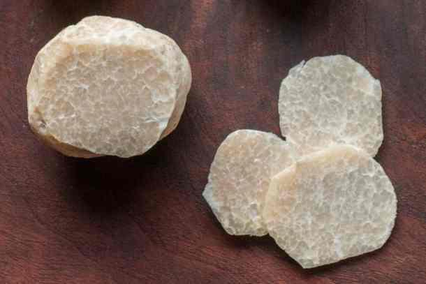 Honey Truffles Mattirolomyces terfezioides