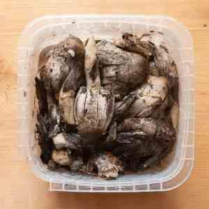 How to make shaggy mane mushroom ink recipe