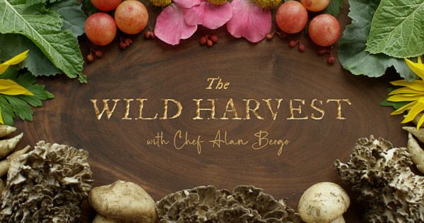 The Wild Harvest Show | Episode 6: Autumn