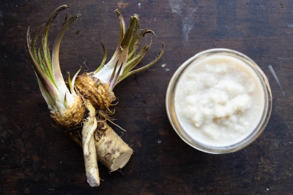 Prepared horseradish recipe made from scratch