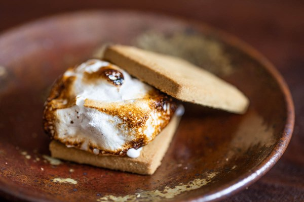 homemade marshmallow s'more