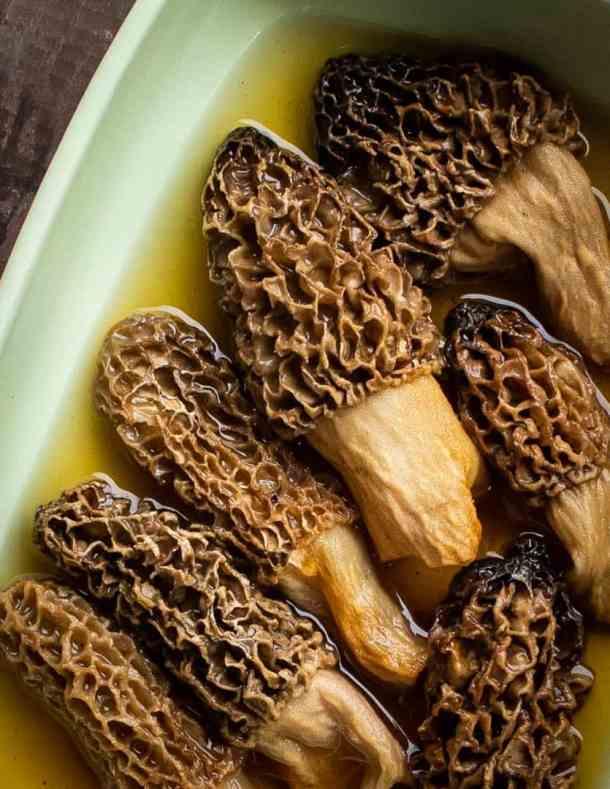 Rehydrating dried morel mushrooms