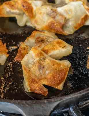 Prickly Ash sausage wontons (13)