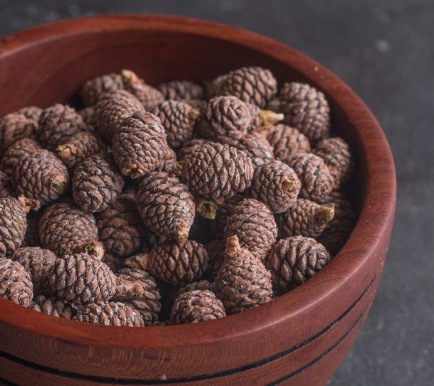Young red pine cones for jam