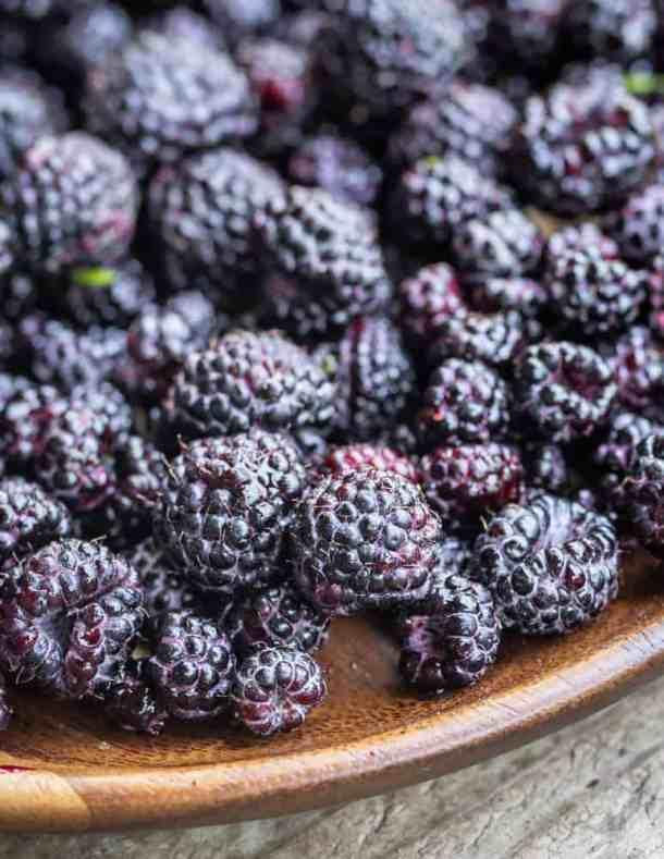 Wild blackcap raspberries or black raspberries (1)