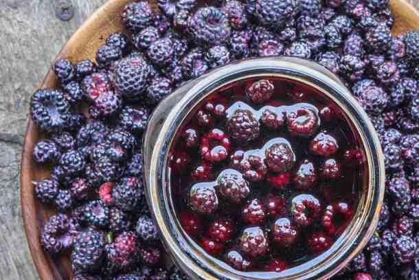 Wild blackcap raspberry or black raspberry infused vinegar