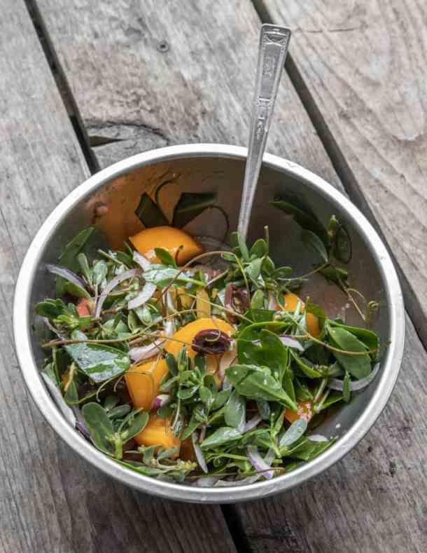 Wild Greek salad with purslane, stonecrop, and grape tendrils