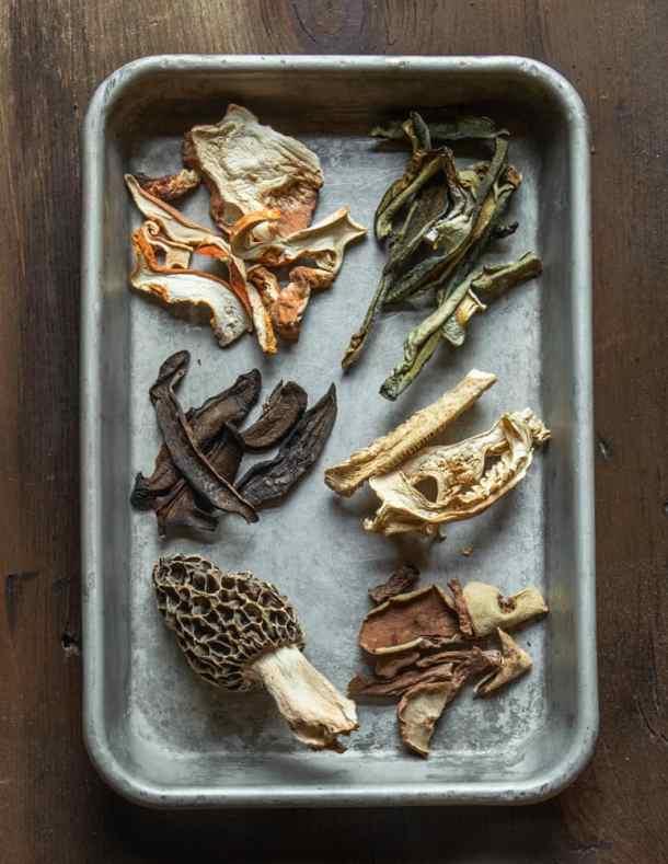 Dried Lobster, Gyroporus cyanescens, Russula parovirescens, Gyroporus castaneus, morel, and Leccinum mushrooms