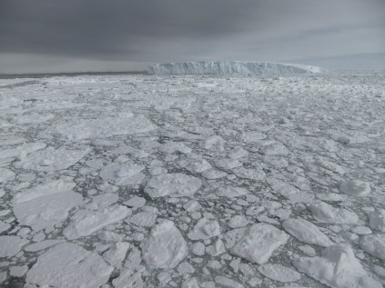 Sea ice and tabular icebergs