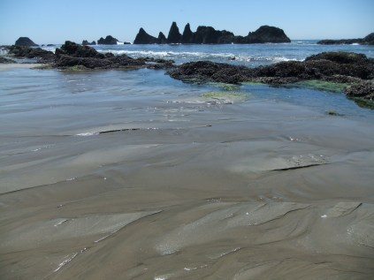 Toothy Oregon coast