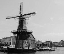 Harlem Windmill