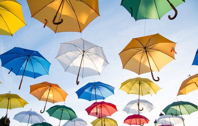 Nutrir a mente, construir o cérebro: Abrir um guarda- chuva