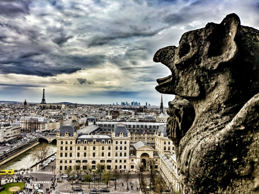 View from Notre Dame, Paris