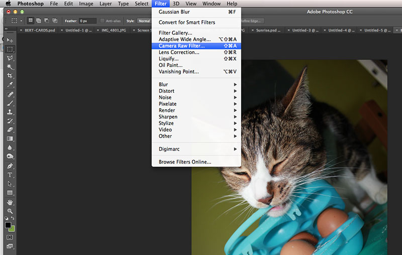 Raw post processing on normal photos in Adobe Photoshop CC