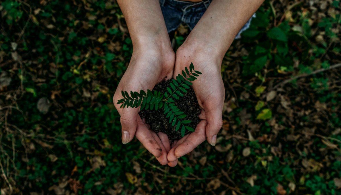 12 datos para entender por qué cuidar el medioambiente es un trabajo común