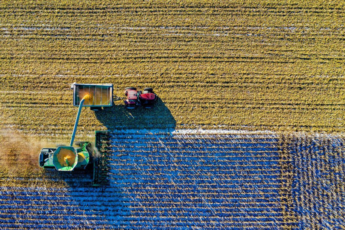 Agricultura. Campo. Foto: Tom Fisk (Pexels)