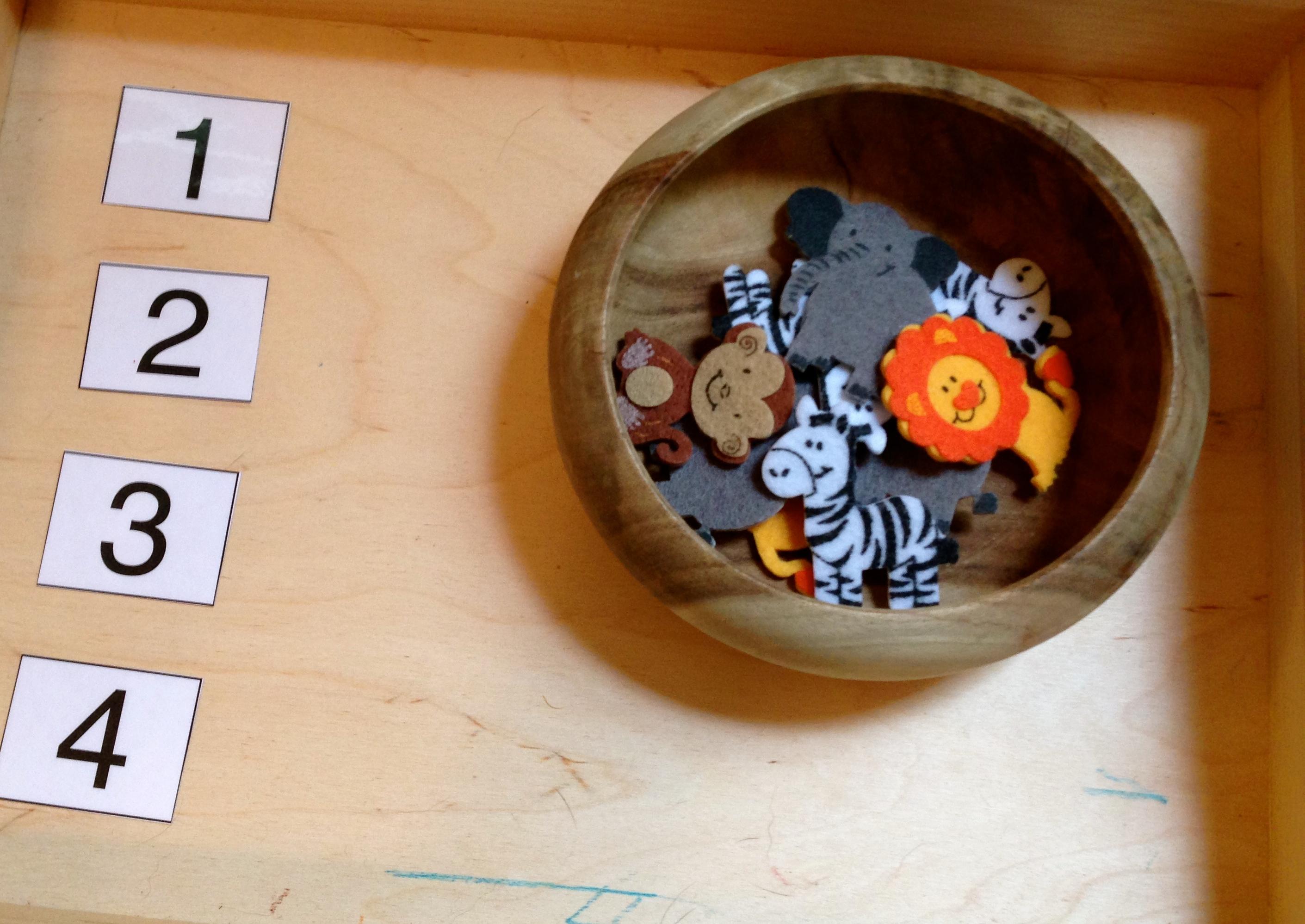 2 Year Old Toddler Worksheet
