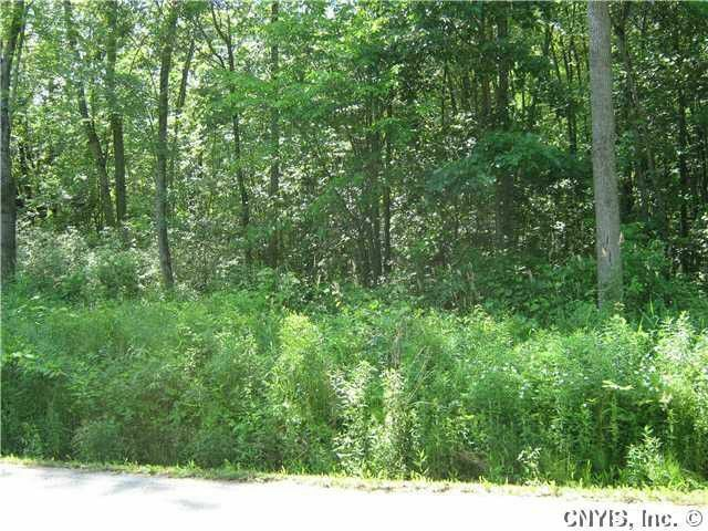 Land For sale New York 2 lots No Reserve !!! 1