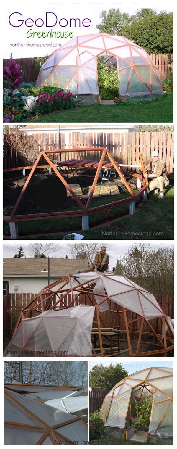 DIY Geodome Greenhouse. This geo-dome is both practical and beautiful, elegant. It has beed the collest greenhouse in town.