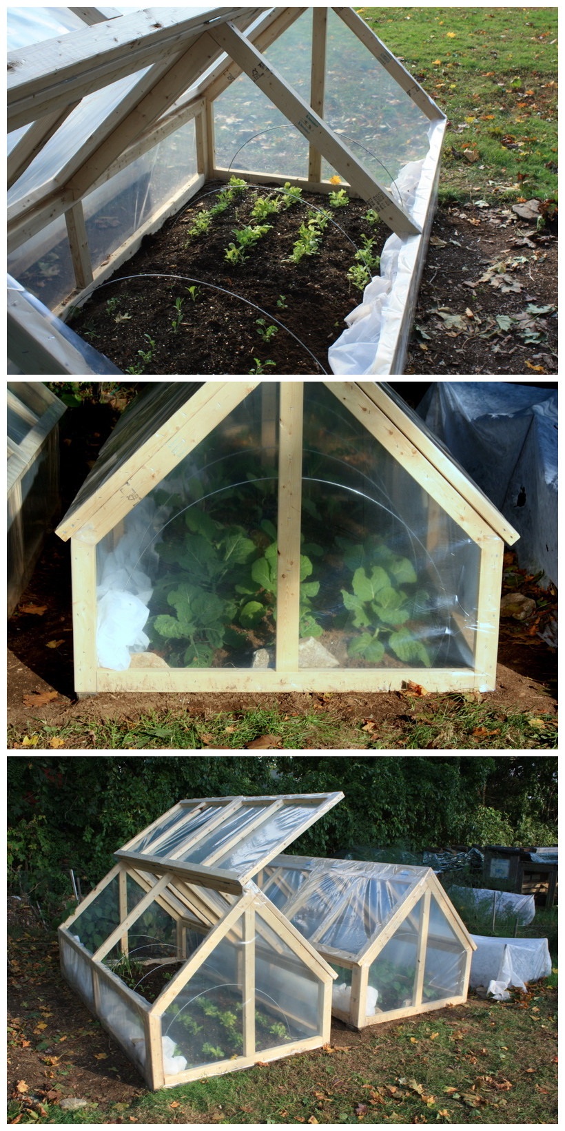 DIY Mini Greenhouse With Roof Panels