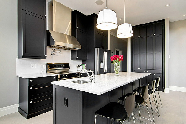 Bold Black Kitchen Cabinet Paint Color Ideas.