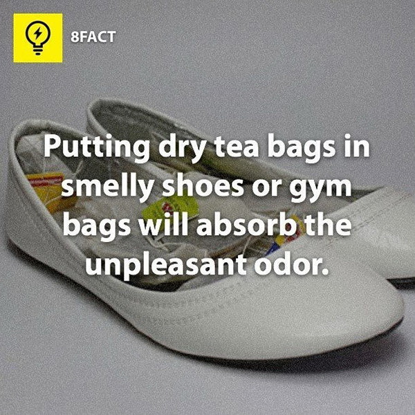 Disinfect and Remove Gross Odor with Baking Soda or Dry Tea Bags.