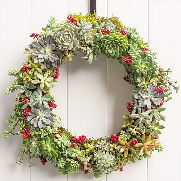 Succulent Wreath for Holidays.