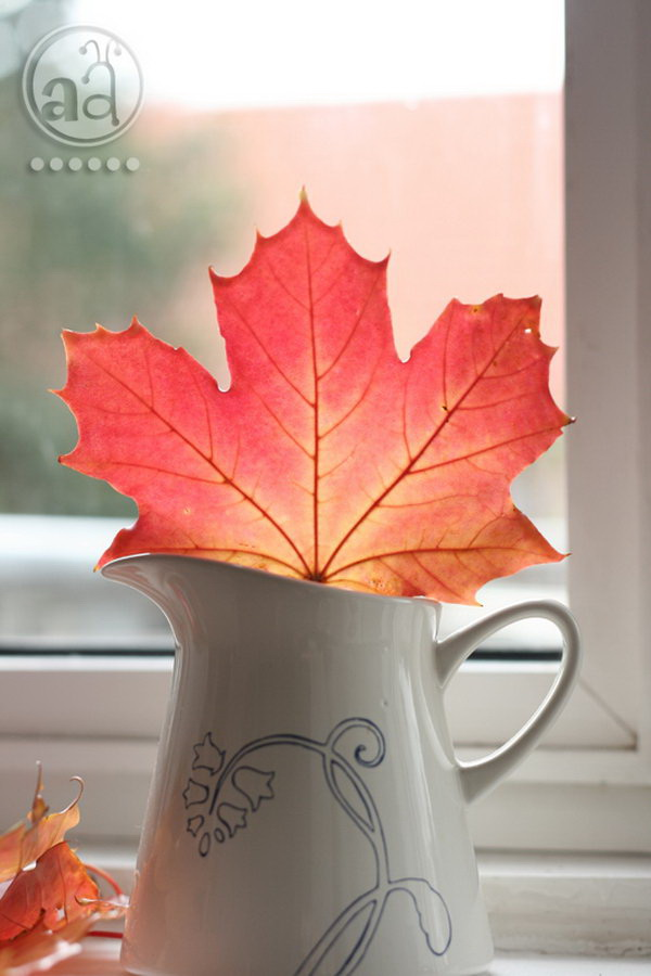 Preserve Fall Leaves with Hot Wax. Enjoy the beauty of autumn months long after the season ends by preserving colorful fall leaves. Preserve your collection of autumn leaves by dipping them in bees wax, the color remains and your house is filled with a lovely smell.