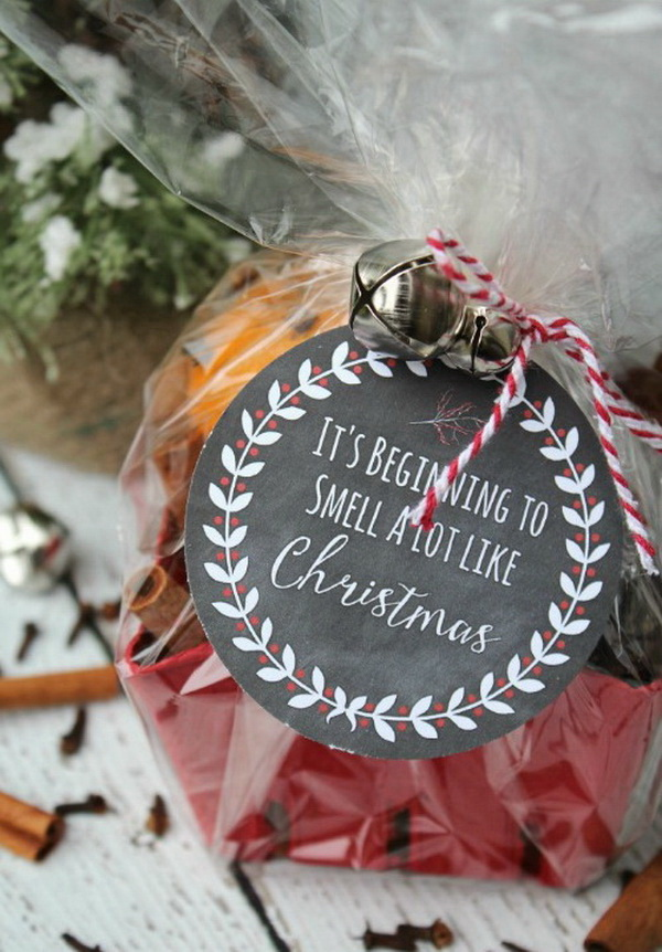 Christmas Neighbor Gift Ideas: Simmering Potpourri With Printable Tag