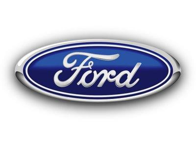 Ford F150 Tailgate Emblem Blue Oval 2004 2005 2006 2007 2008 - FordPartsOne